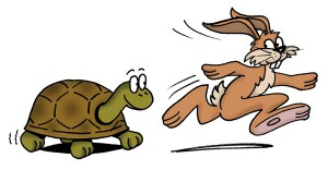 Hare-and-Tortoise-300x156